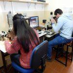 Estudios petrográficos de agregados para hormigón